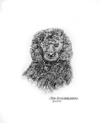 Art Print featuring the drawing Poodle by Jim Hubbard