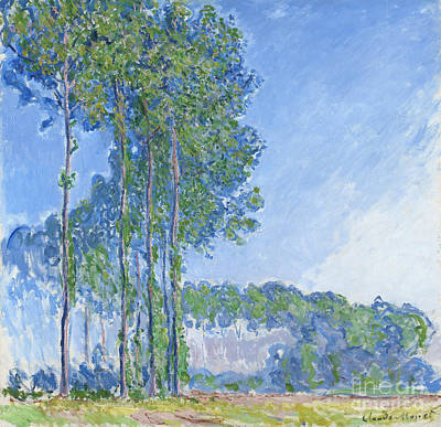 Faded Painting - Poplars by Claude Monet
