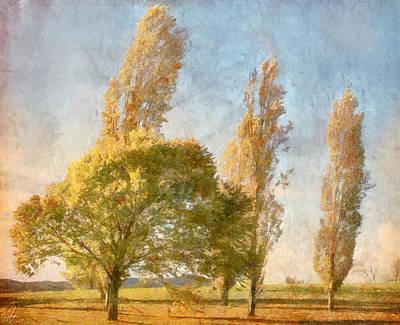 Poplars Art Print by Margaret Hormann Bfa