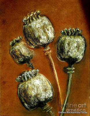 Poppy Seed Heads Art Print by Anna Folkartanna Maciejewska-Dyba
