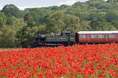 Photograph - Poppy Train by Ed Lukas