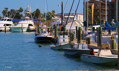 Photograph - Port A Marina by Roena King