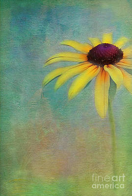 Portrait Of A Sunflower Print by Judi Bagwell