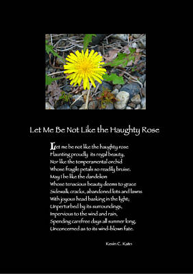 Poster Poem - Let Me Be Not Like The Haughty Rose Art Print by Poetic Expressions