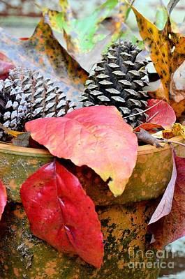 Photograph - Pot Full Of Autumn by Maria Urso