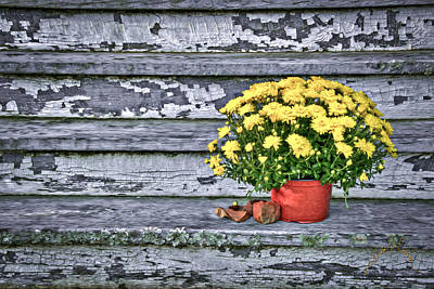 Va Photograph - Pot Of Gold by Williams-Cairns Photography LLC