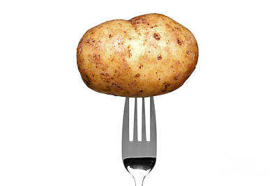 Spuds Photograph - Potato On A Fork Isolated On White by Richard Thomas