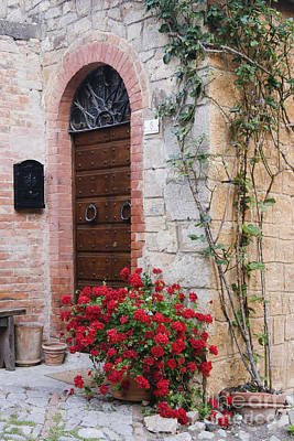 Potted Plant In Front Of Arched Doorway Print by Jeremy Woodhouse