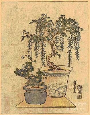Potted Wisteria Art Print by Padre Art