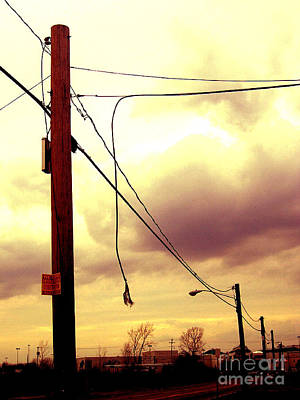 Photograph - Powerline by Silvie Kendall