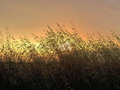 Photograph - Prairie Dusk by Leanna Lomanski