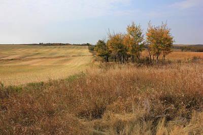 Autumn Photograph - Prairie Fields In Autumn by Jim Sauchyn