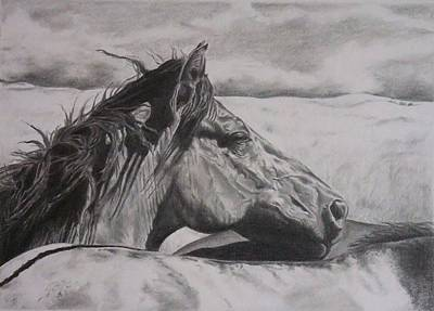 Wild Horses Drawing - Prairie Friends by Mike OConnell