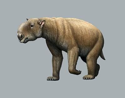 Rhinoceros Photograph - Prehistoric Giant Wombat, Artwork by Mauricio Anton