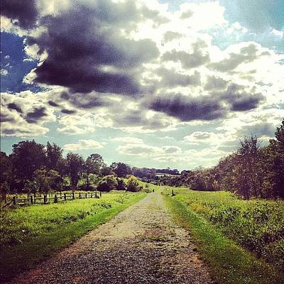 Pathway Photograph - #preserve #nature #pathway #life by Christina Bumbier