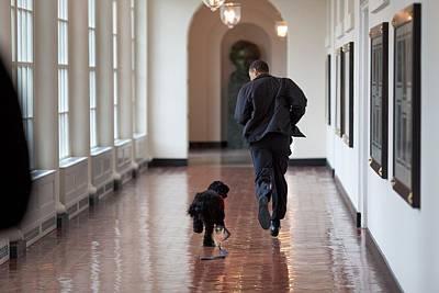 Obama Family Photograph - President Barack Obama Runs by Everett
