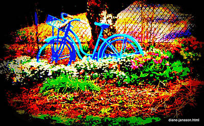 Photograph - Pretty Bicycle by Diane montana Jansson