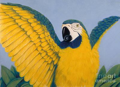 Pastel - Pretty Bird by Audrey Peaty