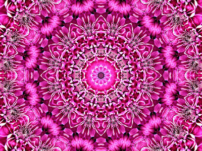Digital Art - Pretty In Pink Floral 8 by Rhonda Barrett