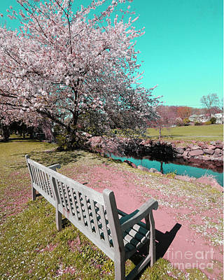Rest Stop Photograph - Pretty In Pink by Paul Ward