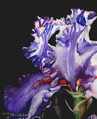 Painting - Pretty In Purple by June Rollins
