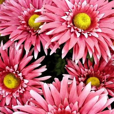 Pretty Pink Faces Original by Florene Welebny