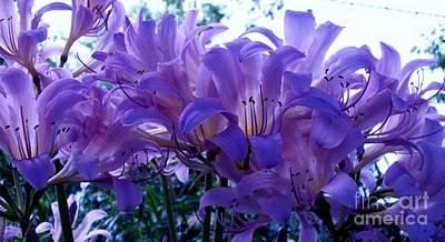 Wrap Digital Art - Pretty Purples by Marsha Heiken