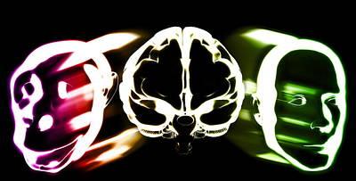 Cognition Photograph - Primate Brain Evolution by Christian Darkin