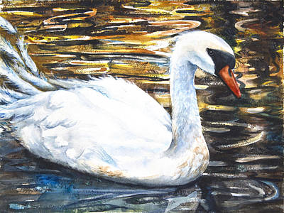Swan Mixed Media - Prince Of Swans by Patricia Allingham Carlson