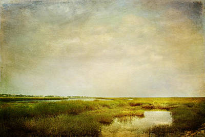 Art Print featuring the photograph Promise Of Twilight by Karen Lynch