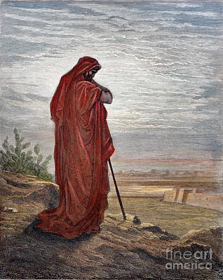 Drawing - Prophet Amos by Gustave Dore
