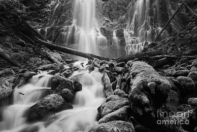 Natural Forces Photograph - Proxy Falls by Keith Kapple