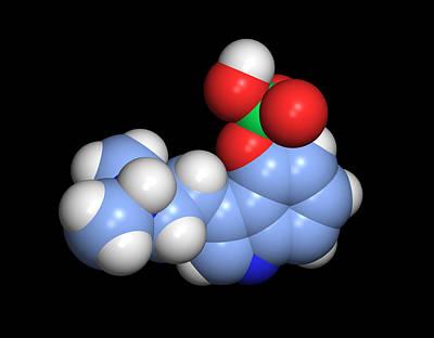 Psilocybin Hallucinogen Molecule Art Print by Dr Tim Evans