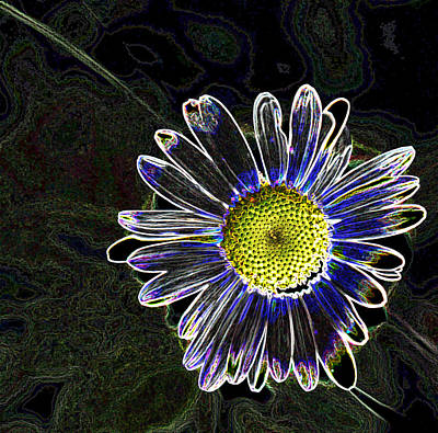 Psychedelic Daisy Art Print