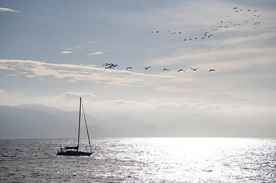 Puerto Vallarta, Mexico Sailboat With Art Print by Keith Levit