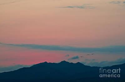 Photograph - Puerto Vallarta Sunset... by Christine Kapler