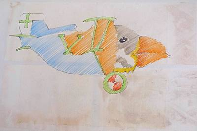 Puffin Drawing - Puffin Biplane by Virginia Stuart