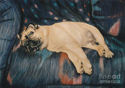 Pastel - Pug Potato by Susan Herber