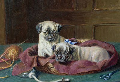 Basket Ball Painting - Pug Puppies In A Basket by  Horatio Henry Couldery