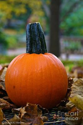 Photograph - Pumpkin Ball by Susan Herber