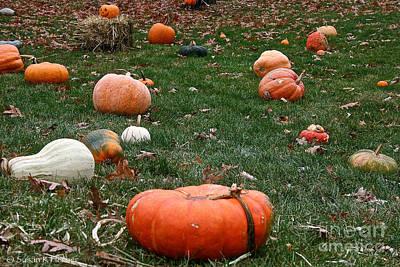 Photograph - Pumpkin Field by Susan Herber