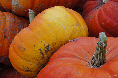 Color Photograph - Pumpkin Glory by Mick Anderson
