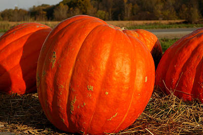 Photograph - Pumpkin Hay Ride by LeeAnn McLaneGoetz McLaneGoetzStudioLLCcom