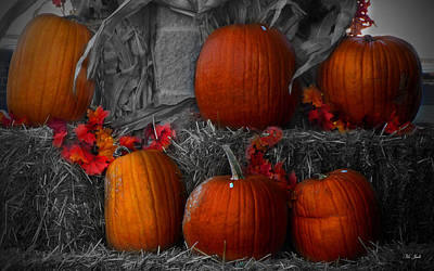 Photograph - Pumpkin Line Up by Ms Judi