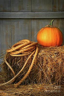 Pumpkin On A Bale Of Hay Art Print by Sandra Cunningham