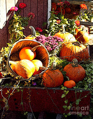 Photograph - Pumpkin Patch by Anne Raczkowski