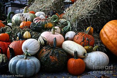 Photograph - Pumpkin Piles by Susan Herber