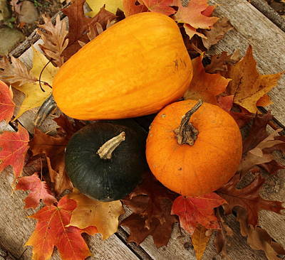 Photograph - Pumpkin Trio by Coby Cooper