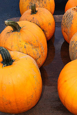 Photograph - Pumpkins All In A Row by Margie Avellino
