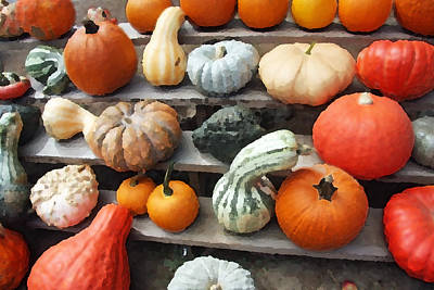 Art Print featuring the photograph Pumpkins And Gourds by Brooke T Ryan
